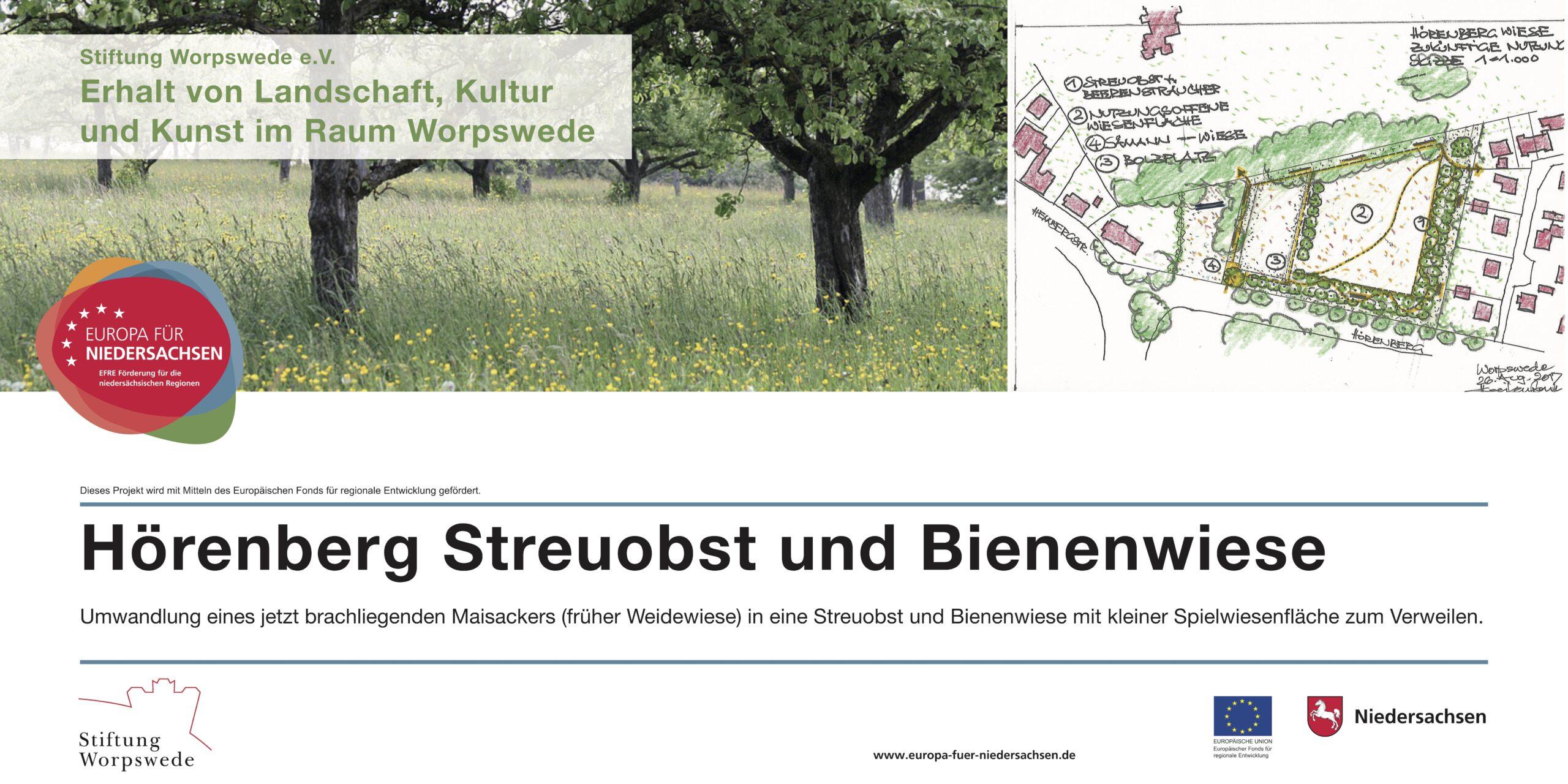 Die Hörenbergwiese, Foto Kathrin Widhalm